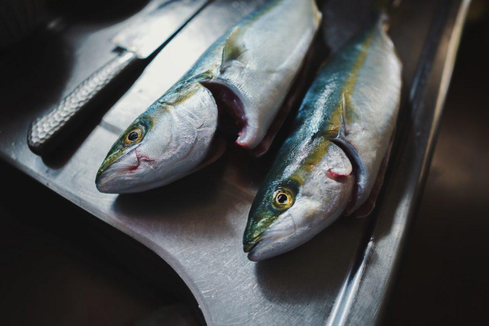 【ライトショアジギング】釣りは人生を豊かにするアイテムです!