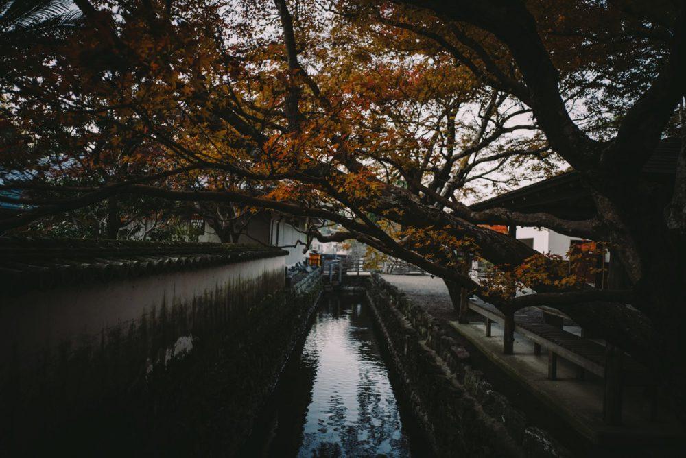 徳島県徳島市の丈六寺の紅葉