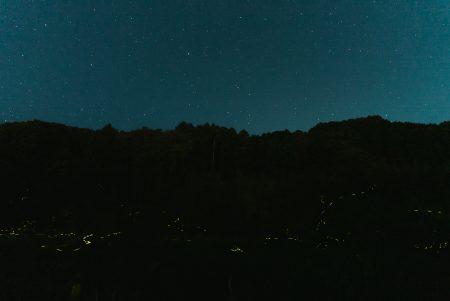 SONY α7sⅢ・ISO51200で撮る夜のホタル