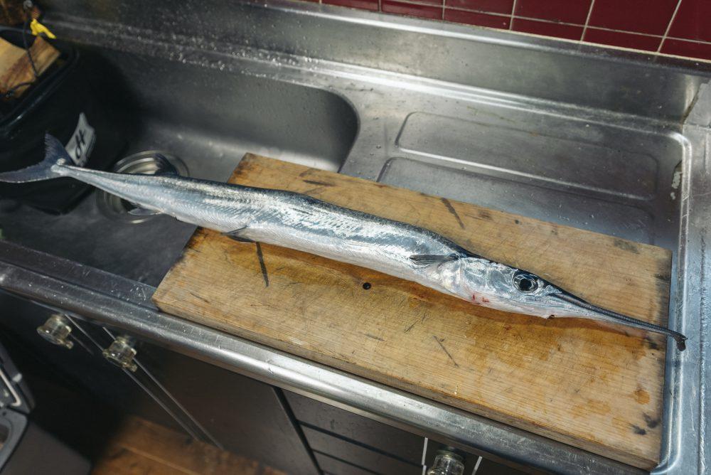 不味いと言われている魚『ダツ』を食べてみたら…