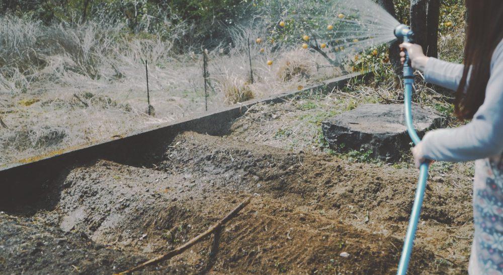 自家菜園を始めるために家の庭に畑作りました